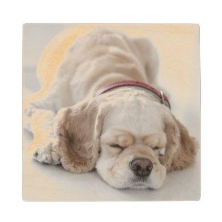 El dormir del perro de cocker spaniel posavasos de madera