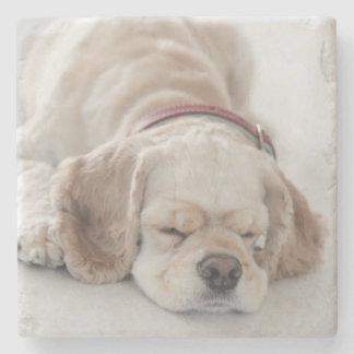 El dormir del perro de cocker spaniel posavasos de piedra