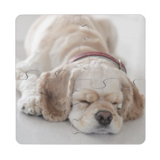 El dormir del perro de cocker spaniel posavasos de puzzle