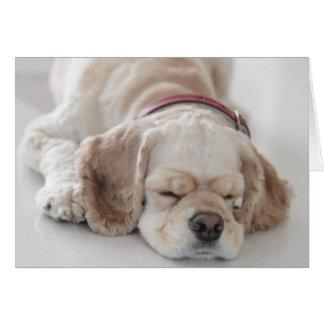 El dormir del perro de cocker spaniel tarjeta de felicitación