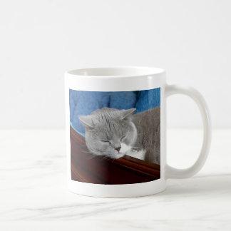 el dormir gris y blanco del gato taza