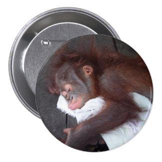 El dormir huérfano del bebé del orangután pin redondo de 3 pulgadas