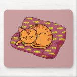El dormir lindo del gato tapete de ratón