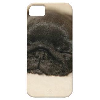 El dormir negro del perrito del barro amasado iPhone 5 carcasa