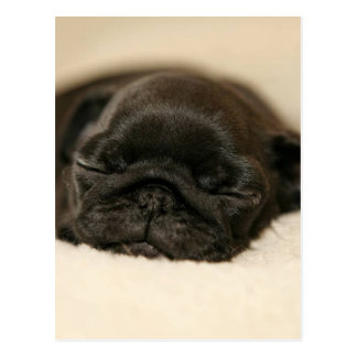 El dormir negro del perrito del barro amasado tarjeta postal
