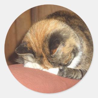 """El dormir """"rojo"""" del gato en la tos pegatina redonda"""