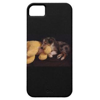 El dormir Sheltie iPhone 5 Cárcasas