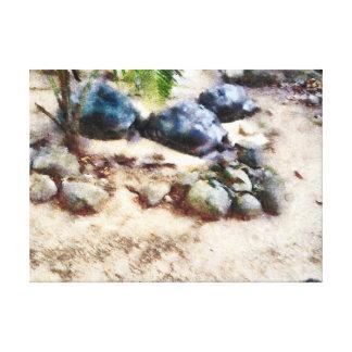 el dormitar de la tortuga impresion de lienzo