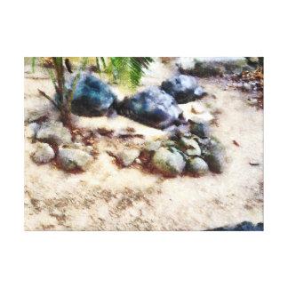 el dormitar de la tortuga impresión en lienzo estirada