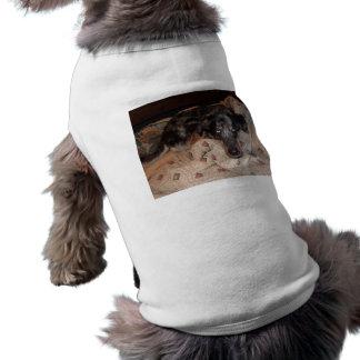 El dormitar del perro del leopardo de Catahoula Camiseta De Mascota