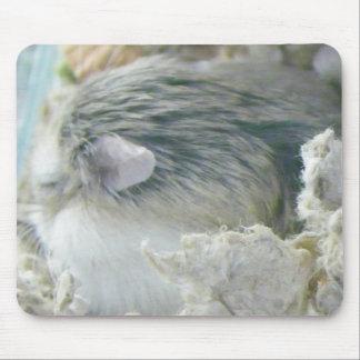 El dormitar lindo de la galleta alfombrillas de ratones