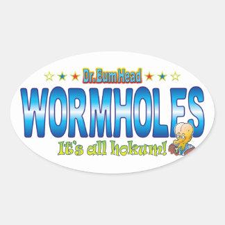 El Dr. B Head de los Wormholes Pegatina Ovalada