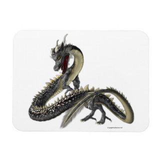 El dragón de plata iman