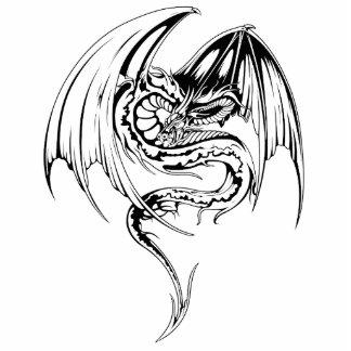 El dragón del Wyvern es criaturas míticas de la Fotoescultura Vertical