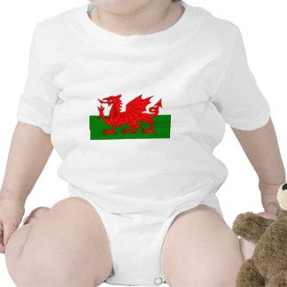 El dragón rojo [bandera de País de Gales] Camisetas