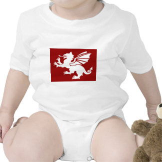 El dragón rojo trajes de bebé