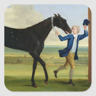 "El duque del negro ""hermoso"" de Rutland, c.1720 Pegatina Cuadrada"