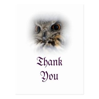 El Eagle-búho eurasiático le agradece postal