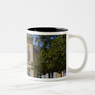 El edificio principal del castillo francés, renova taza de café
