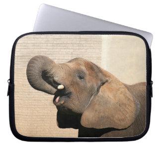 El elefante africano come manga computadora