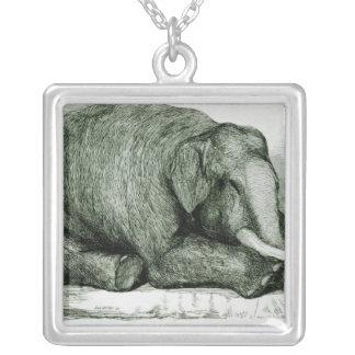 El elefante muerto collar plateado
