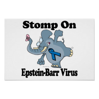 El elefante pisa fuerte en el virus de Epstein-Bar Póster