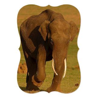 """El elefante potente levanta el pie derecho invitación 5"""" x 7"""""""
