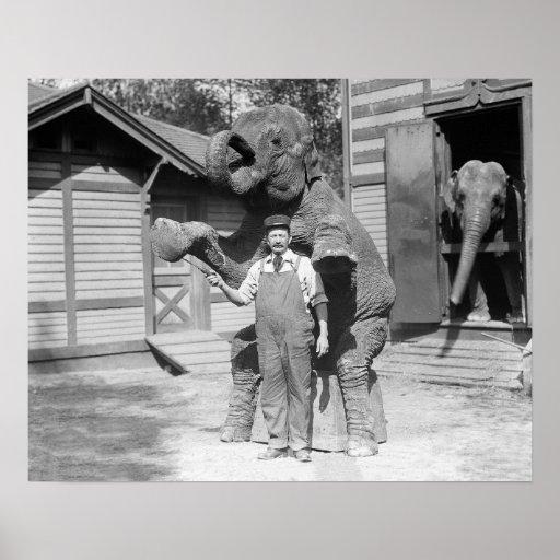 El elefante realiza un truco, 1915 impresiones