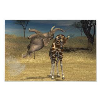 El elefante salta sobre jirafa impresiones fotograficas