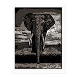 El elefante tarjeta postal