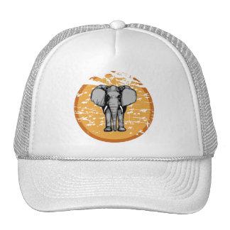 El elefante y el vintage se descoloraron Sun Gorros Bordados