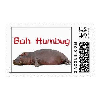 El embaucamiento de Bah dice este hipopótamo Sello