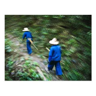 El emigrar a través de la selva tailandesa tarjeta postal