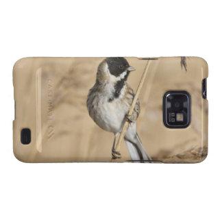 El empavesado de lámina (schoeniclus del Emberiza) Samsung Galaxy S2 Funda