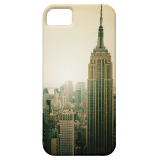 El Empire State Building iPhone 5 Fundas