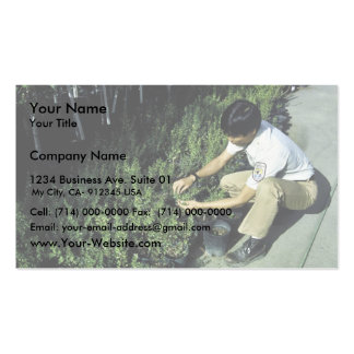 El empleado examina crecimiento vegetal tarjetas de visita