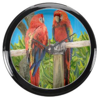 El encaramarse de los loros del Macaw del escarlat Relojes Pecera