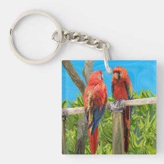 El encaramarse de los loros del Macaw del Llavero Cuadrado Acrílico A Doble Cara