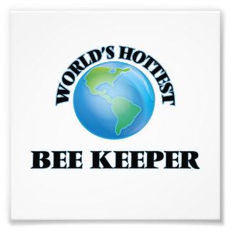 El encargado más caliente de la abeja del mundo fotografias