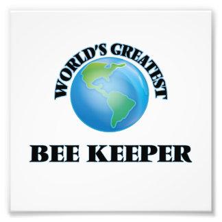 El encargado más grande de la abeja del mundo arte fotográfico