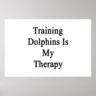 El entrenamiento de delfínes es mi terapia impresiones
