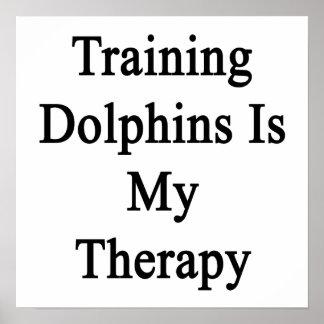 El entrenamiento de delfínes es mi terapia posters