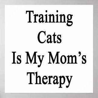 El entrenamiento de gatos es la terapia de mi mamá impresiones