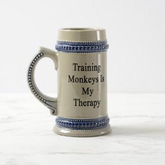 El entrenamiento de monos es mi terapia jarra de cerveza
