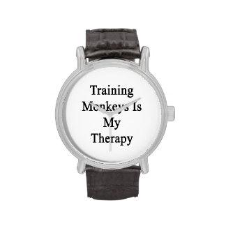 El entrenamiento de monos es mi terapia reloj de mano