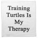 El entrenamiento de tortugas es mi terapia