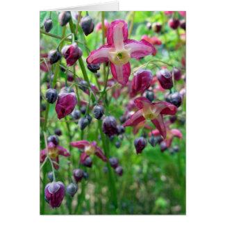 El Epimedium florece la tarjeta de cumpleaños