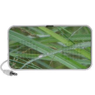 El episodio/la hierba de la naturaleza en lluvia iPhone altavoz