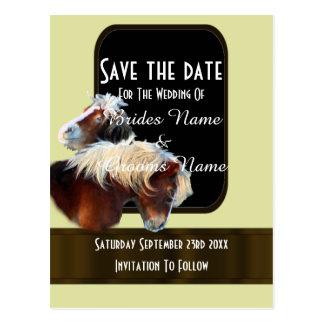 El equestrian del caballo y del potro ahorra la postales