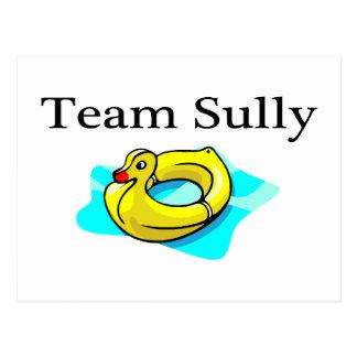 El equipo Sully (el pato) Tarjeta Postal